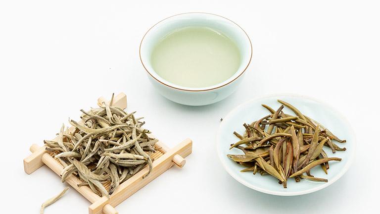 baihao yin zhen (2)