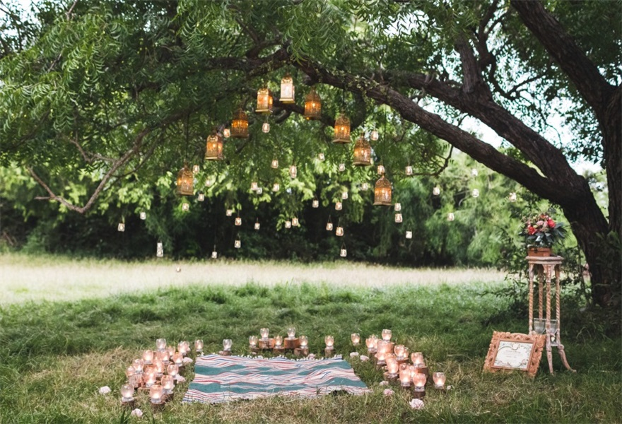 8x8FT Vinyl Photography Backdrop,Nature,Orange Clementine Tree Photoshoot Props Photo Background Studio Prop