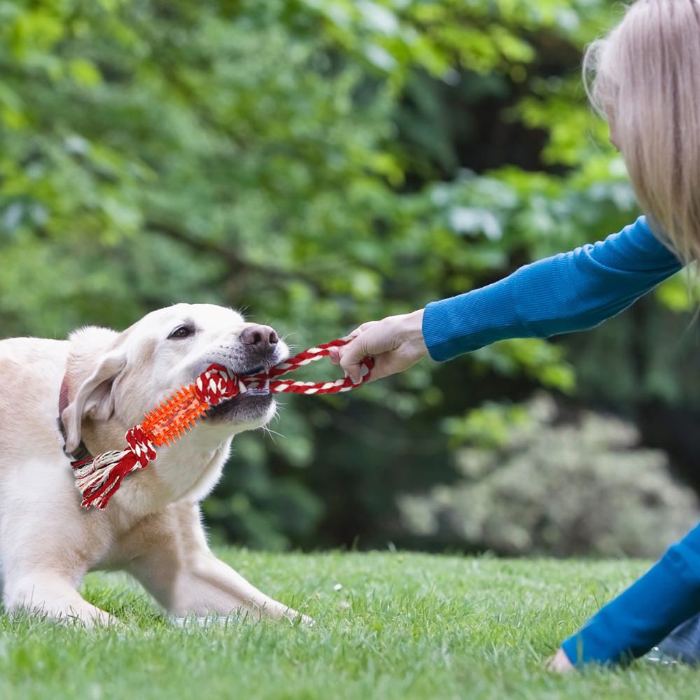 Aggressive Chew Toys For Dogs Indestructible Interactive