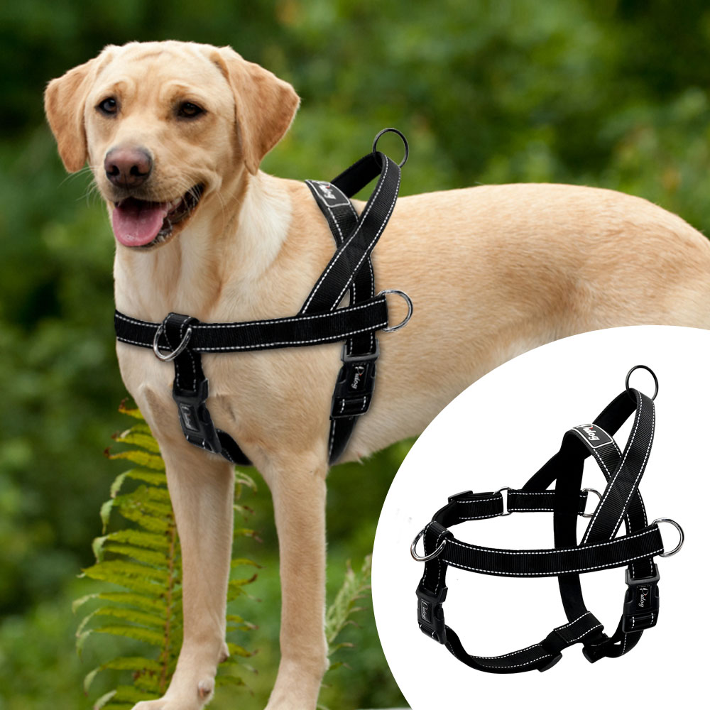 Soft Padded Led Dog Harness for Medium Pitbull Highly Reflective
