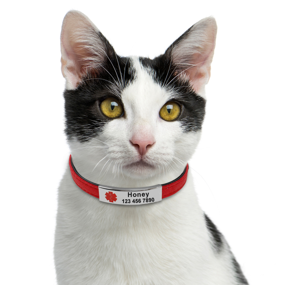 Esa Emotional Support Cat Collar Personlized Slide On