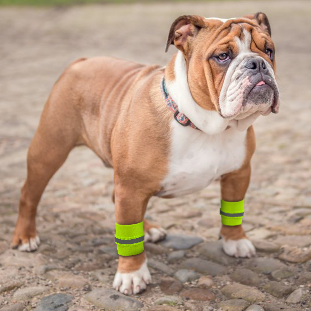 Details about 2pcs/pack Reflective Dog Boots Ankle Protection Knee Brace  Wrister Safety S M L