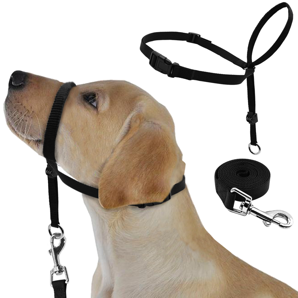 Head Collars For Dogs That Pull