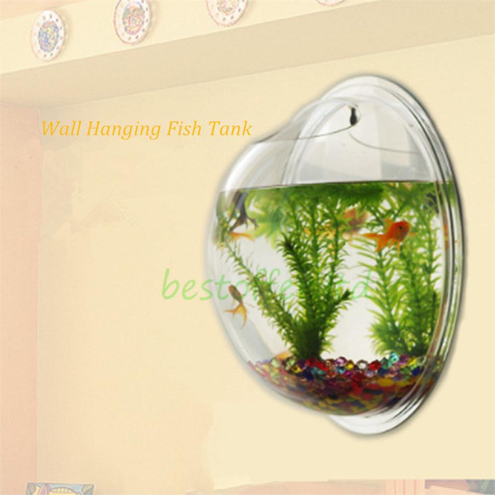 Wall Bubble Fish Tank Small Wall Mounted Acrylic Fish Tank Hanging Bowl Bubble Aquarium .