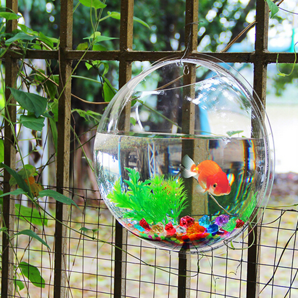 wall mount fish bowl aquarium tank betta goldfish acryllic