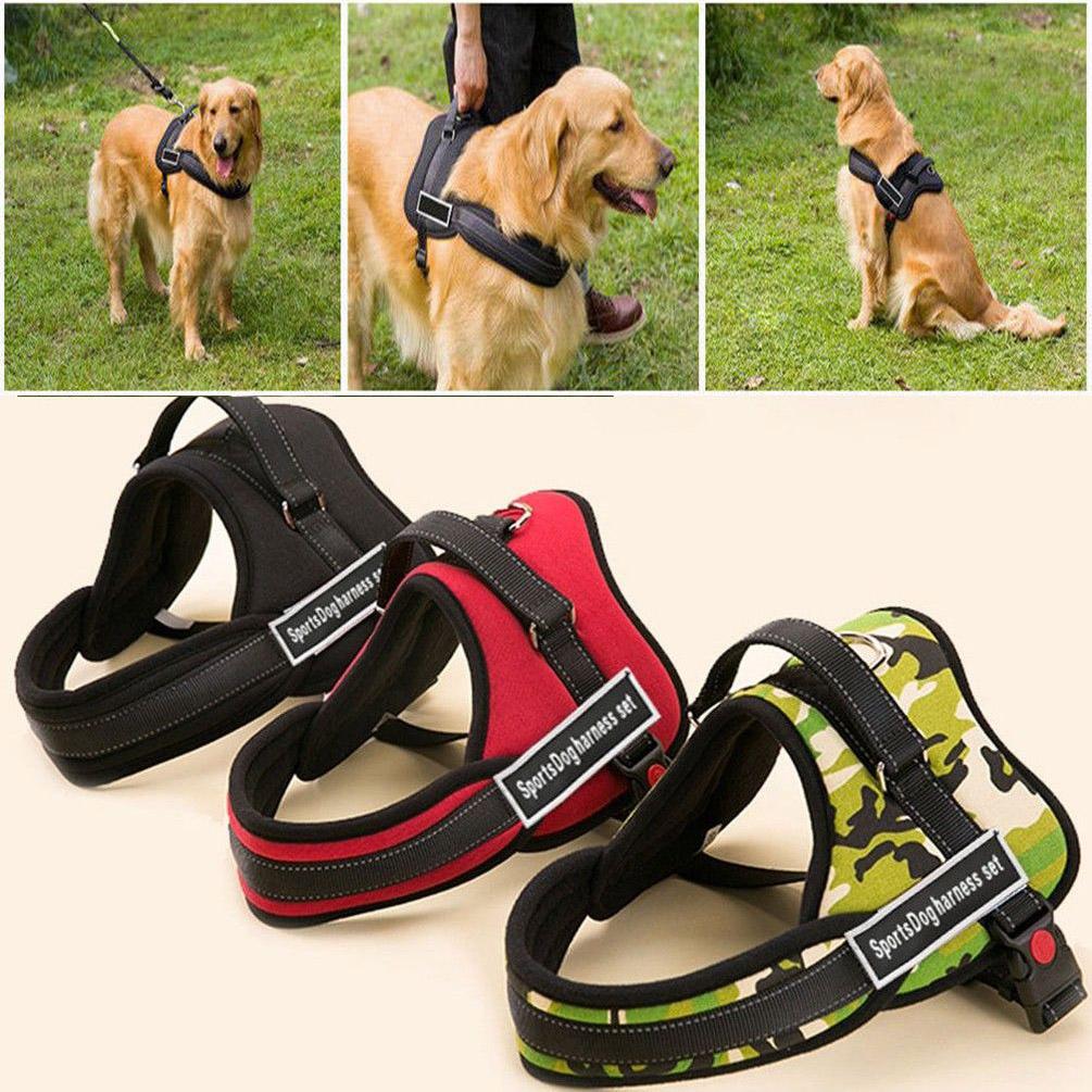 Dog Harness Wiring Diagram Kancil Fuse Box Sports Set Nylon Padded Adjust Working Trainning Pitbullsports