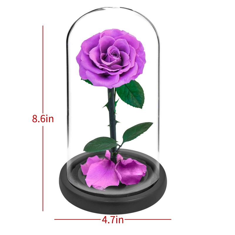 Purple Carnation Real Preserved Flower Ornament