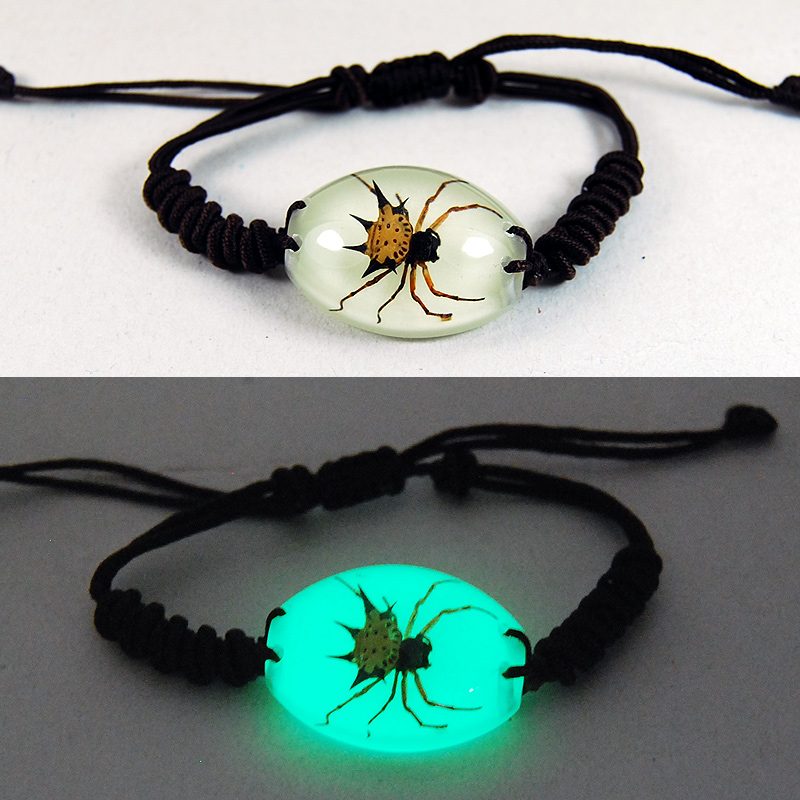 REAL SPINY SPIDER GLOW BRACELET BANGLE INSECT SPECIMEN
