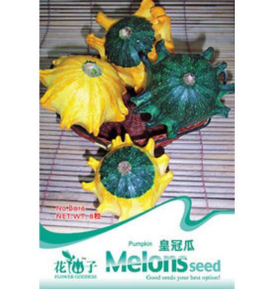 8 Seeds Golden Pumpkin Seeds Cushaw Cucurbita Organic Vegetable 8 Seeds ♫