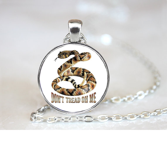 Dont Tread On Me PENDANT NECKLACE Chain Glass Tibet Silver Jewellery