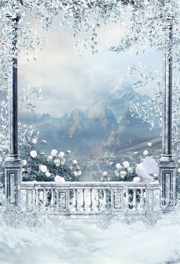 Winter Scene Setter Backdrop 5x7ft Winter Mountain Faraway