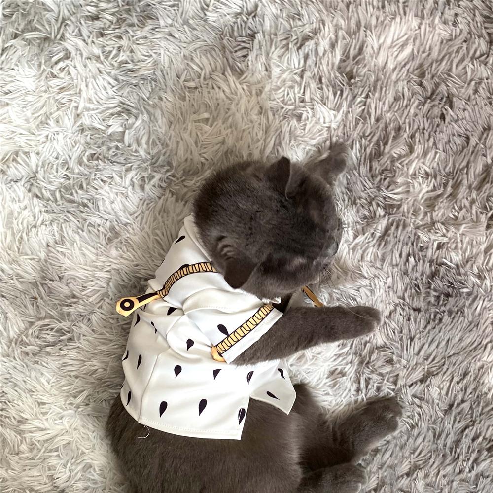 JoJo/'s Bizarre Adventure Bruno Cosplay Small Dog Cat Clothes Pet Costume Track