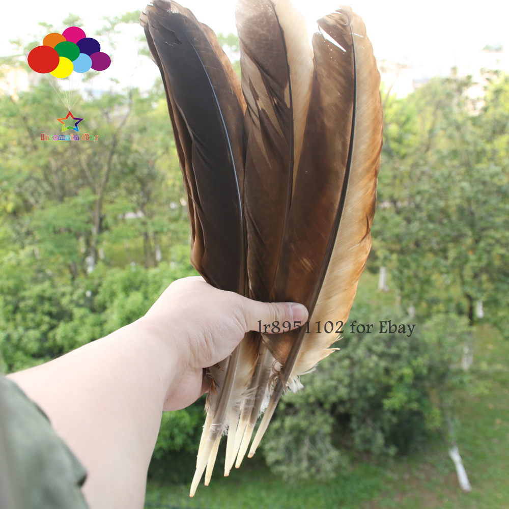 Wholesale 2-50pcs rare natural pheasant feathers 45-50 cm//18-20 inch decoration