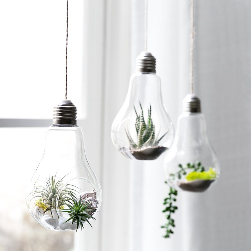 3 Pack Light Bulb Hanging Plant Terrarium Glass Vase For Succulent