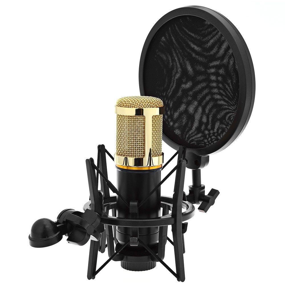 studio microphone mic shock mount stand holder wind screen shied pop filter mask 600685365489 ebay. Black Bedroom Furniture Sets. Home Design Ideas