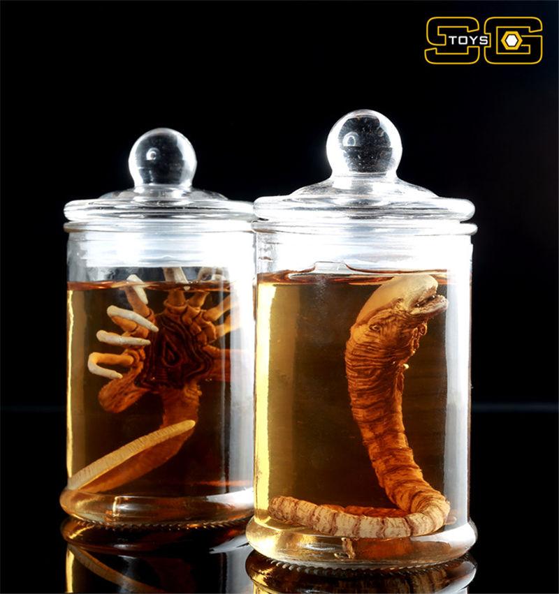 SGToys 1//6 action figure toys Predator Alien larvae Culture bottle suit