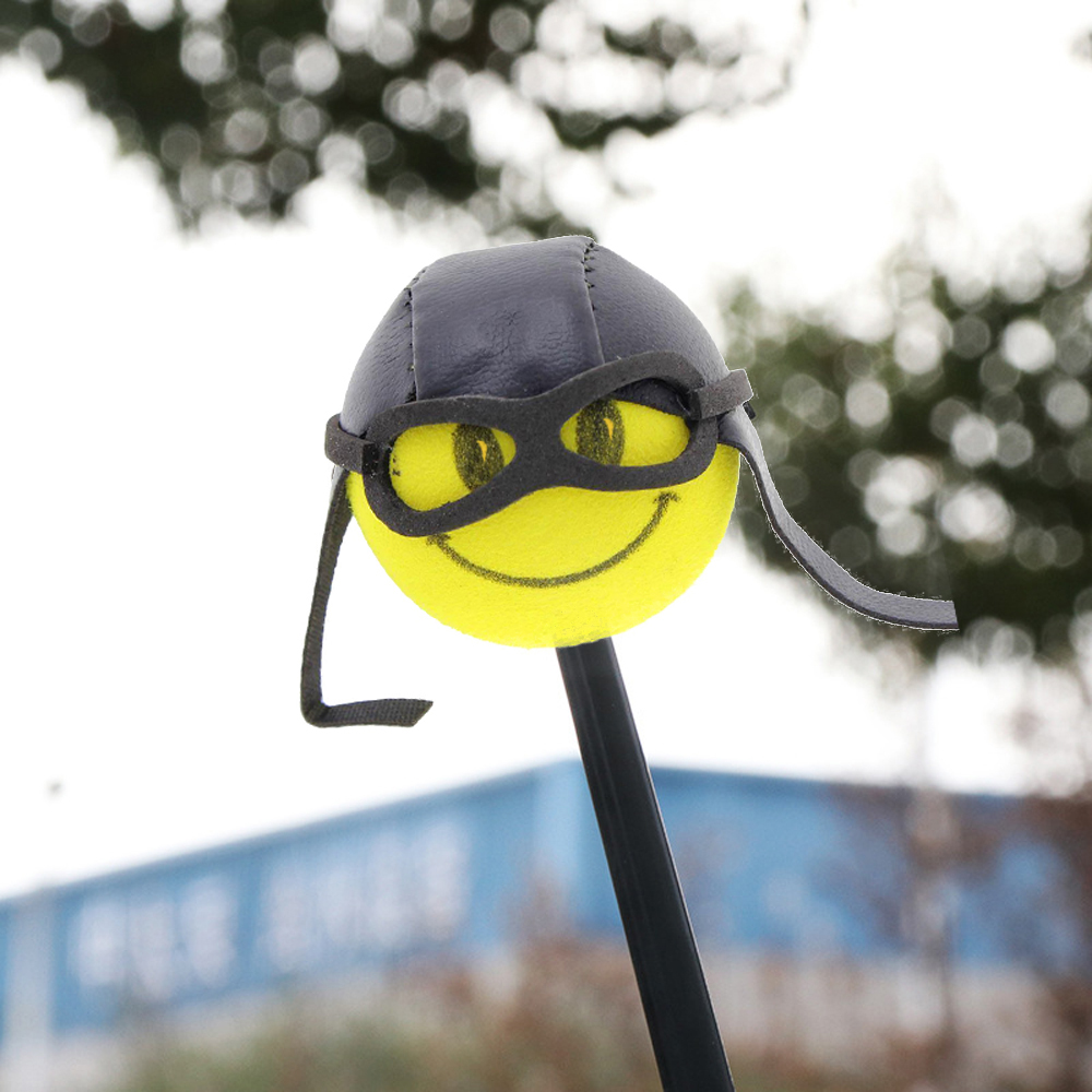 Details about 1x Car Antenna Smiley Honey Bee Skull Smile Aerial Ball Cat  Pilot Decor Topper