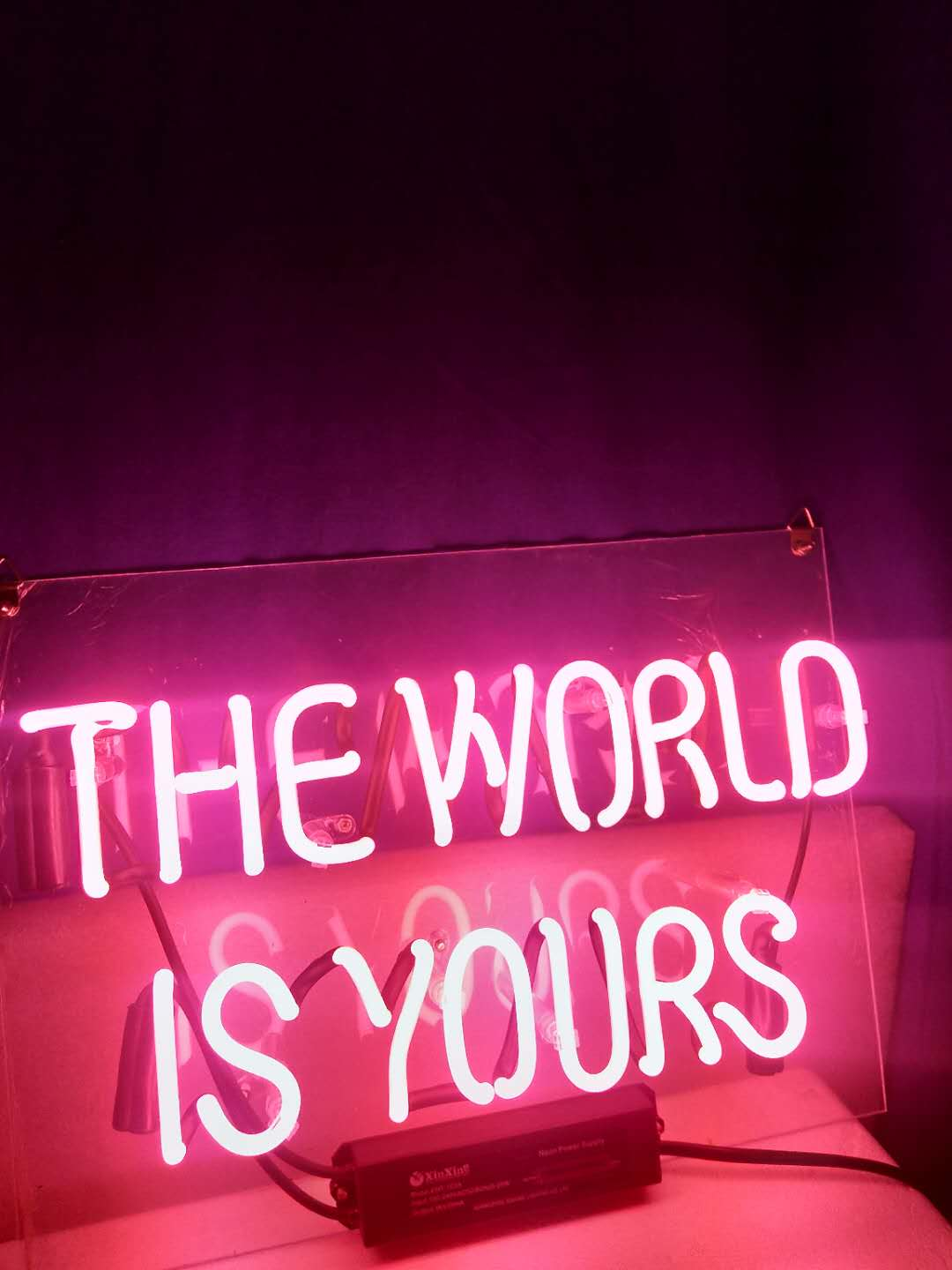 Details About New The World Is Yours Pink Neon Light Sign Beer Bar Home Wall Display Gifts