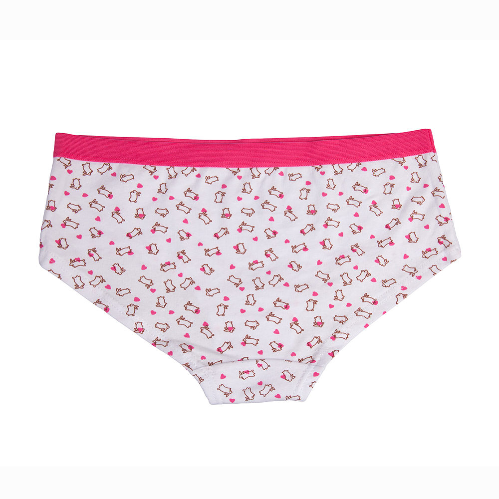 d70b415c5a6 Cool Animal Underwear Women Ladies Cotton Panties Seamless Briefs Knicker  6pcs