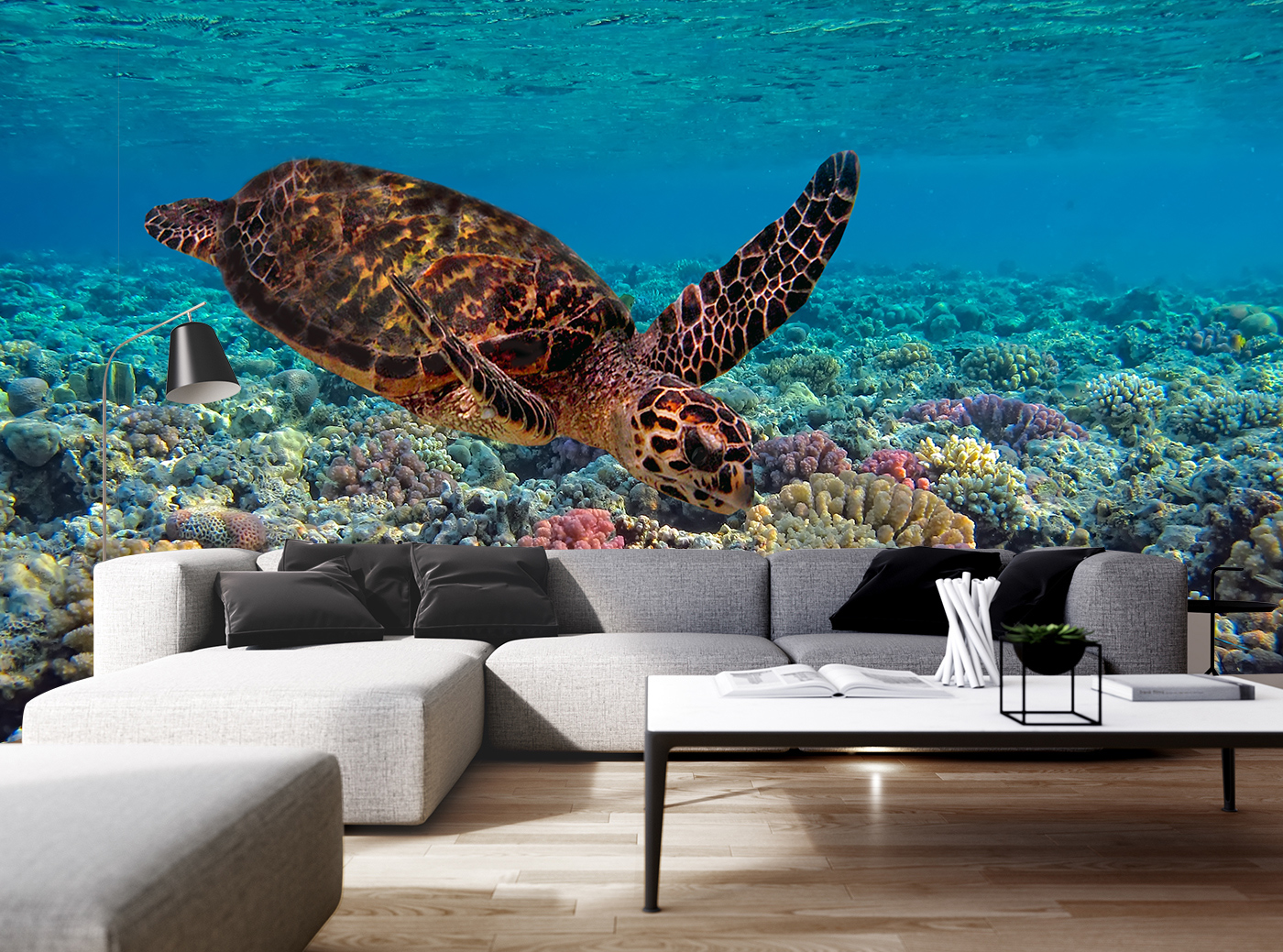 Colorful C Reef And Sea Turtle