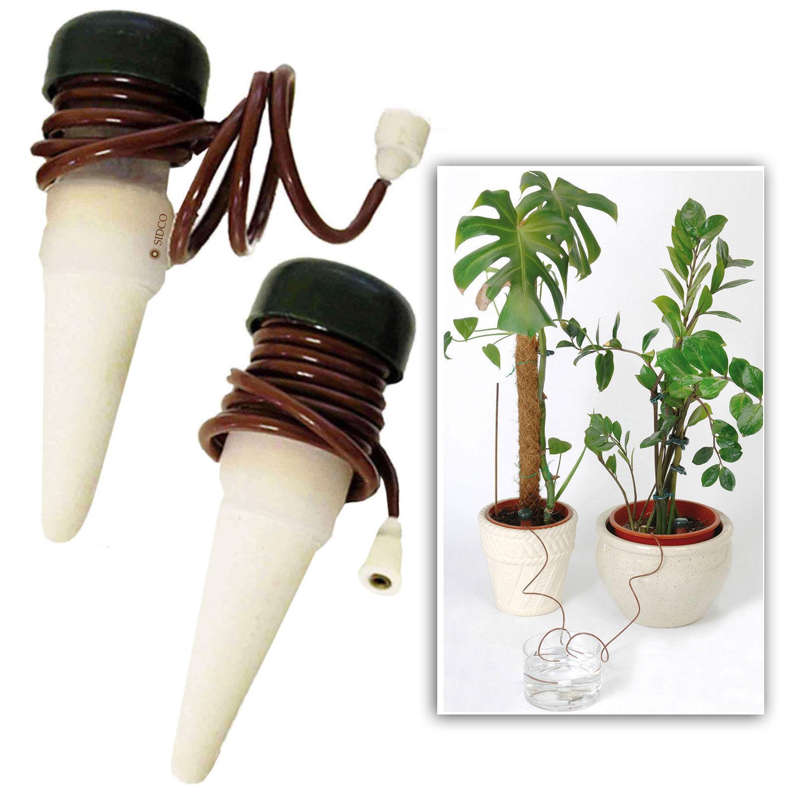 10 x bewässerung für pflanzen bewässerungssystem wasserspender